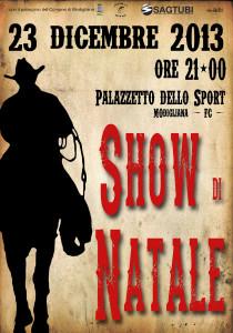 show2013